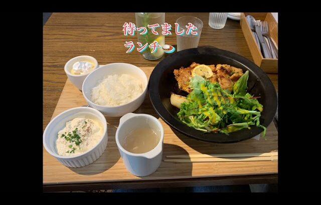 BLUGRE CAFE(ブルグレ カフェ)へ初ランチ🍛!福山市立大学近くに雰囲気抜群のカフェがオープンしてました❣️