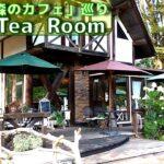 「東京の森のカフェ」巡り 四軒目≪Tea Room≫ 棚沢永子さん著作の掲載カフェをできる限り巡ってみます。
